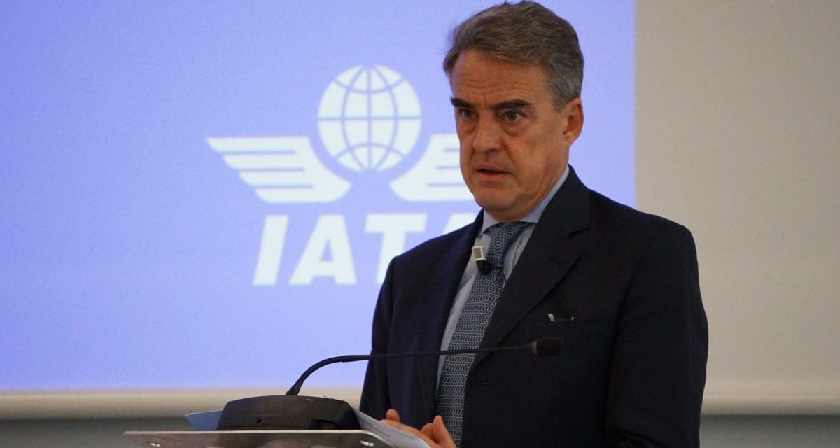 Airlines fighting for their lives, says International Air Transport Association